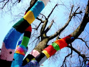 a tree that's been yarn bombed